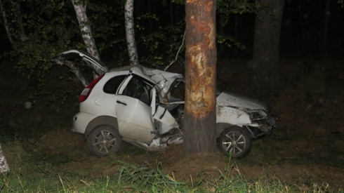 Пьяного водителя на трассе Екатеринбург — Курган остановило дерево. Машина — в хлам
